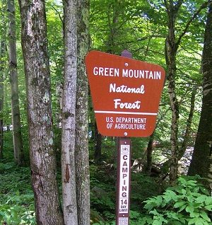 Best U.S. Camping Spots Green Mountain National Forest, Vermont