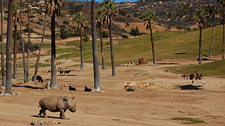 San Diego Coastal City Tourist Attractions wild animal park