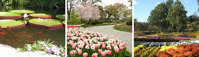 Dallas Tourist Attractions Arboretum and Botanical Garden